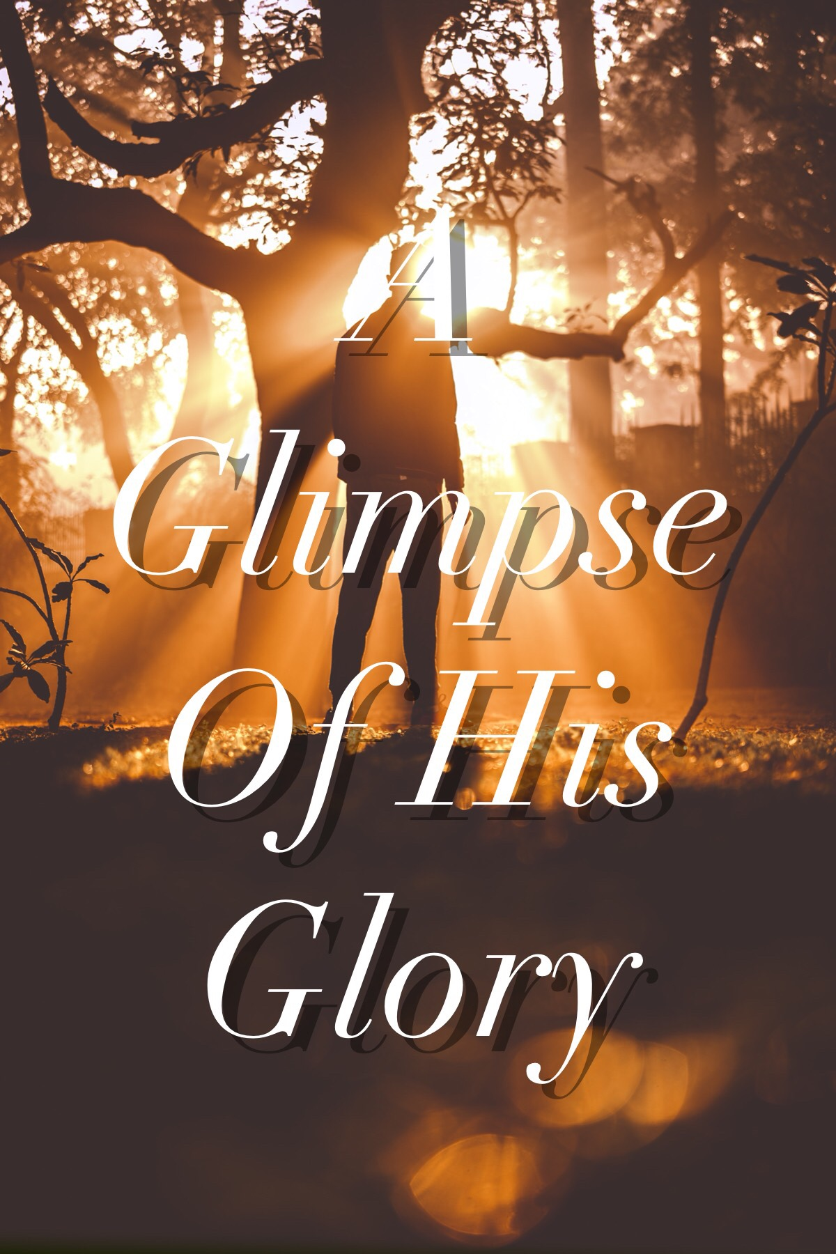 The Glory of God in a Single Father's Story